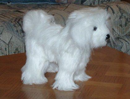 Dog Plushies free pattern  http://www.silverseams.com/opensource/dog-plushie-pattern.html