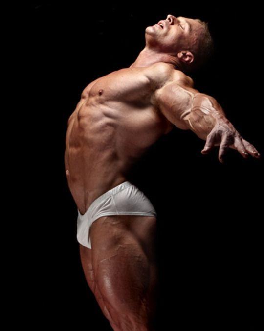 bulgemusc