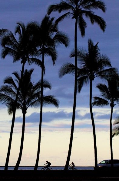 Wish you were here? Hilo Bayfront at sunset   Hawaii 24/7