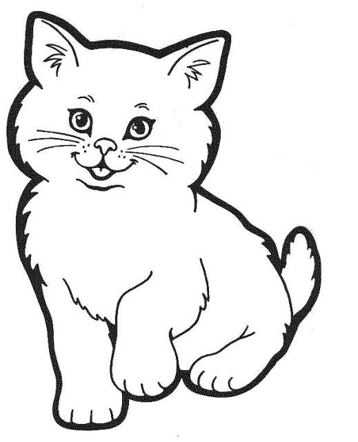 Mewarnai Gambar Hewan Kitty Kucing Lucu Gambar Hewan Hewan