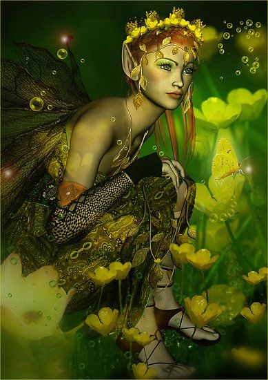 i do believe in fairies: