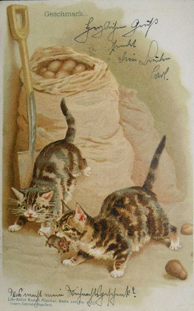 One of a series of five postcards of cats hunting a mouse illustrated by Helena Maguire