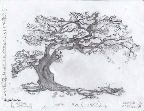 Cherry Blossom Mural Drawing Tree Drawing Tree Sketches Tree Illustration