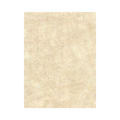"WashingtonWallcoverings Crackle 27' x 27"" Panel Wallpaper Color:"