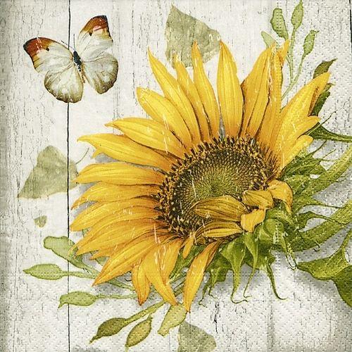 4 Lunch Paper Napkins for Decoupage Craft Vintage Napkin Tender Butterflies
