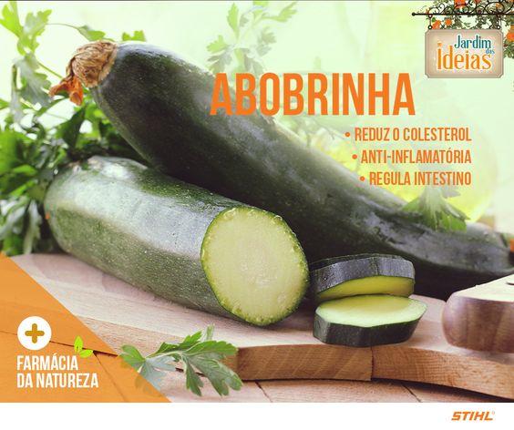 Muito presente no cardápio brasileiro, a abobrinha é um alimento de baixo valor calórico, cerca de 20 calorias por 100g. Você sabia que ela também é rica em vitaminas do complexo B e vitamina A, potássio, fósforo, cálcio, sódio e magnésio?