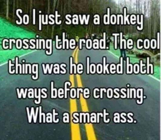 So there was a donkey... C8a5e5c85bee8038d9c6f9e29b4d77a6