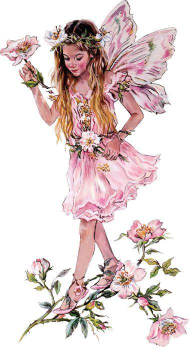 Christine Haworth è nata e vive in Gran Bretagna.   E' nata nel 1951, nel Blackburn Lancashire. Ha iniziato a disegnare ancora pri...