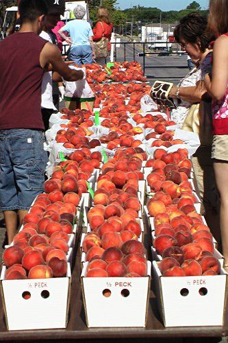 Parker County Peaches!!!! At the Weatherford, Texas Peach Festival ...