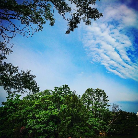 walk_around  #morning #sky  #cloud walk_around  #morning #sky  #cloud