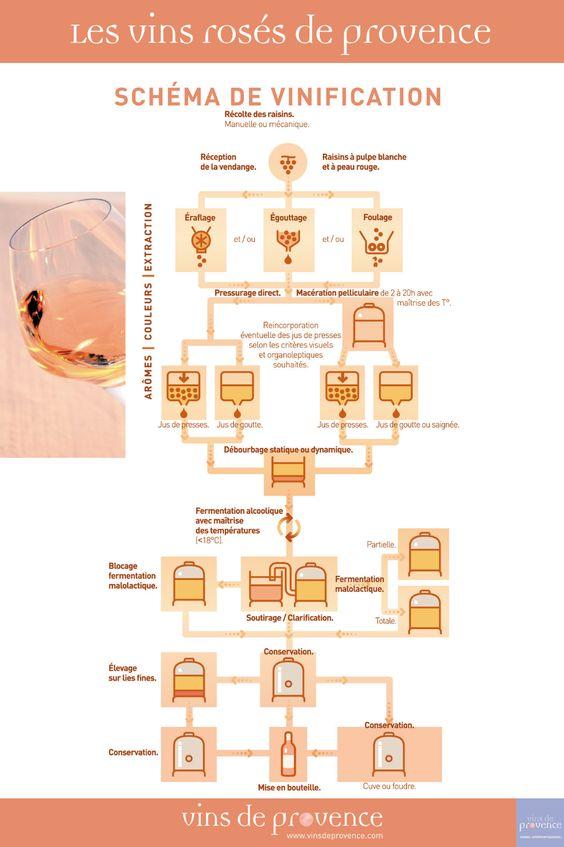 Vins ros s de provence sch ma de vinification cuisine for Schema cuisine