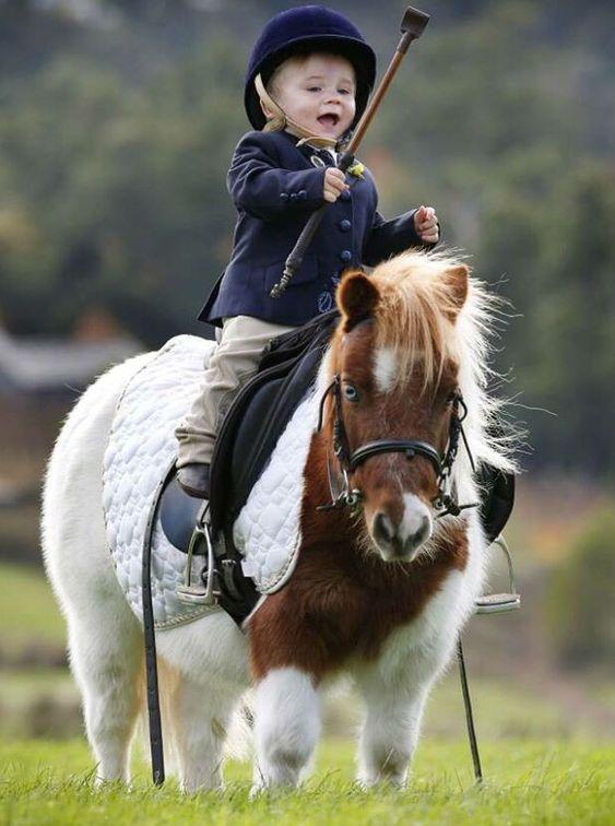 Скъпоценни ❤️ малко дете на кратко сладък пухкав пони .: