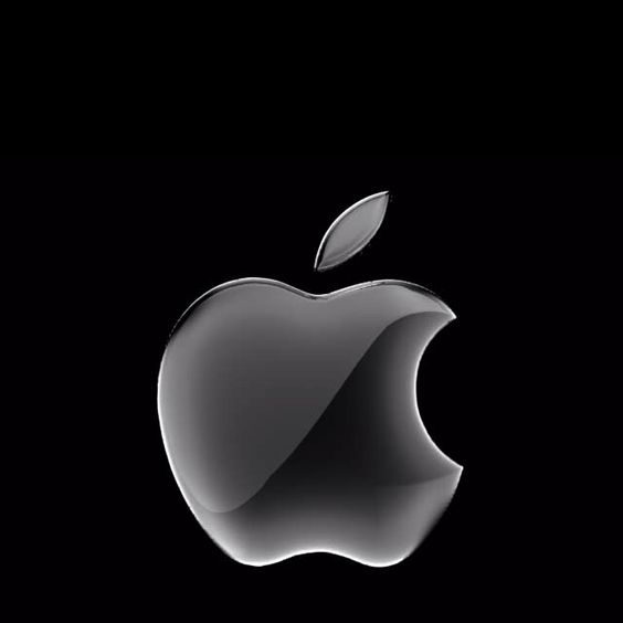 An apple, that represents the vision of the late, great Steve Jobs. If you look around in the classroom, I know for sure that over 50 percent of the students own something with this symbol. Apple Inc is one of the biggest companies in the world and their annual profit is sky high