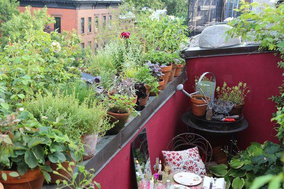10 Secrets for Growing an Urban Balcony Garden  : Gardenista