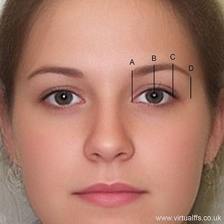 Alexandrian eyebrow plucking diagram ~ MUCH better advice than the typical measure-from-your-nose standard!