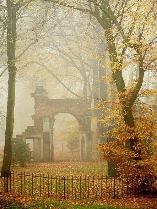 A misty morning in the English countryside. - #countryside #English #misty #morning