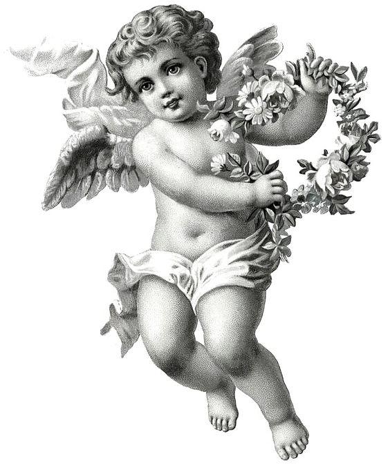 vintage angel drawing - Google Search