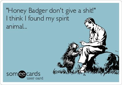 'Honey Badger don't give a shit!' I think I found my spirit animal...