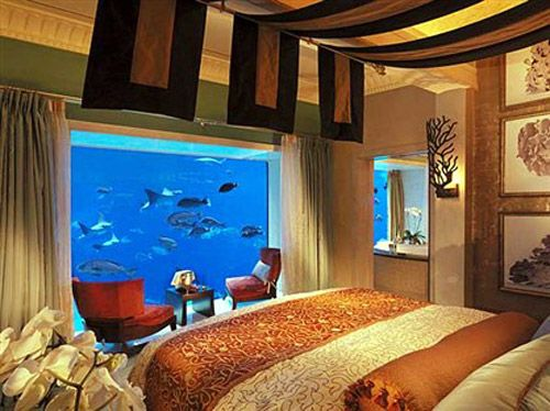 Atlantis Hotel Dubai Room With Aquarium Can Be Booked At Trivago Wandersleeps Pinterest Ed Bedrooms And