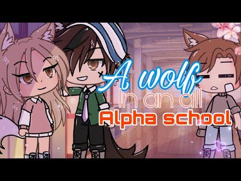 Glmm A Wolf In An All Alpha School Glmm Gacha Life Mini Movie Youtube Movies Life Life Video
