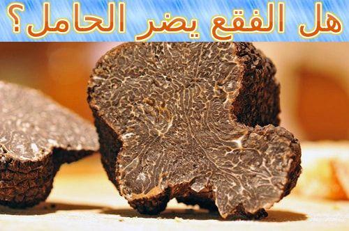 هل الفقع يضر الحامل Truffles Chocolate Cookie Chocolate