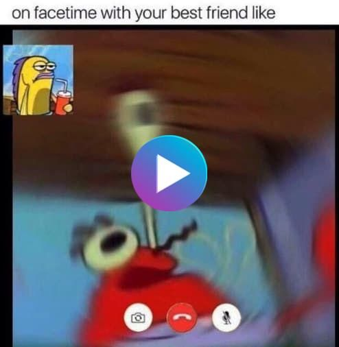 50 Memes You Need To Send To Your Best Friend Right Now Your Best Friend Best Friends Funny Memes