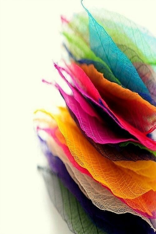 Pin By Kolozsi Rebeka On Pagina Facebook Happy Colors Rainbow Colors Colours
