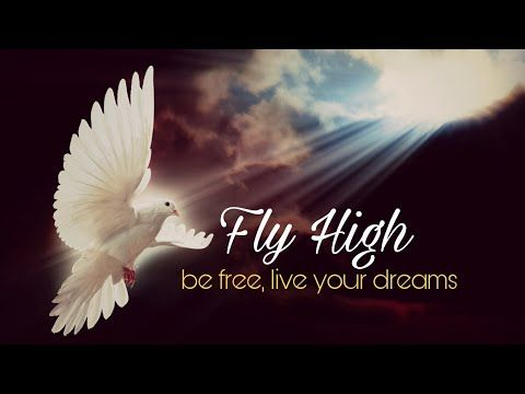 Fly High Be Free Live Your Dreams Whatsapp Status 2018