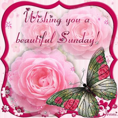 Wishing you a beautiful Sunday day pink flowers friend days of the week sunday sunday greeting sunday graphic beautiful sunday