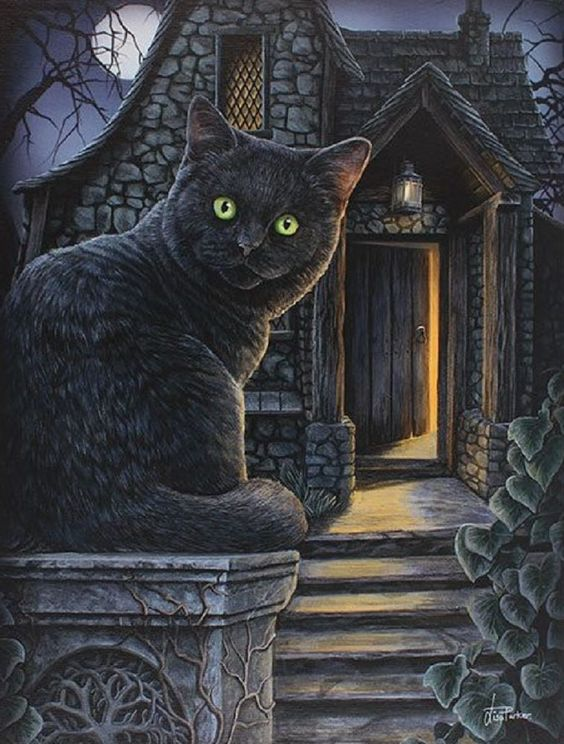 What Lies Within - Black Cat & Witch House - Lisa Parker