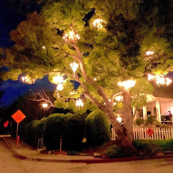 chandelier tree like i\'m some kind of wood elf | domesticity ...