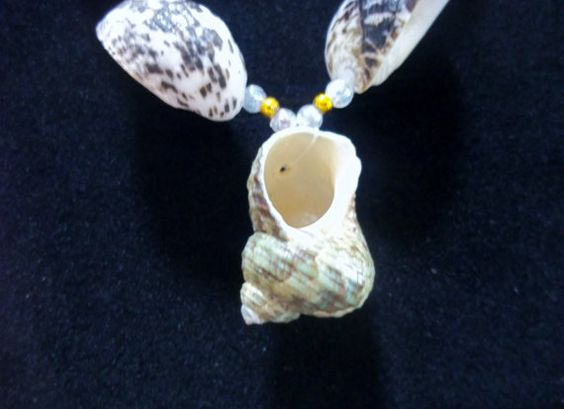 Beautiful shell necklace.  Perfect for that beach trip!