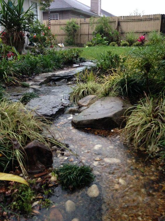 The rainforest garden how to design a dry creek bed 10 for Wet garden designs