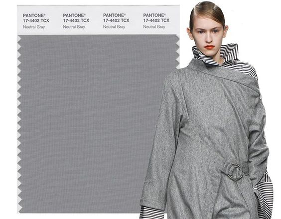 Fall/ Winter 2017-2018 Pantone Colors: Neutral Gray