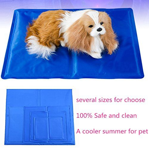 Pet Heating Pad Pecut Low Voltage Safe Electric Heating Pet Mat For Dogs And Cats Warming Mat With Chew Resistant Cord And Wate Pet Heating Pad Pet Mat Dog Cat