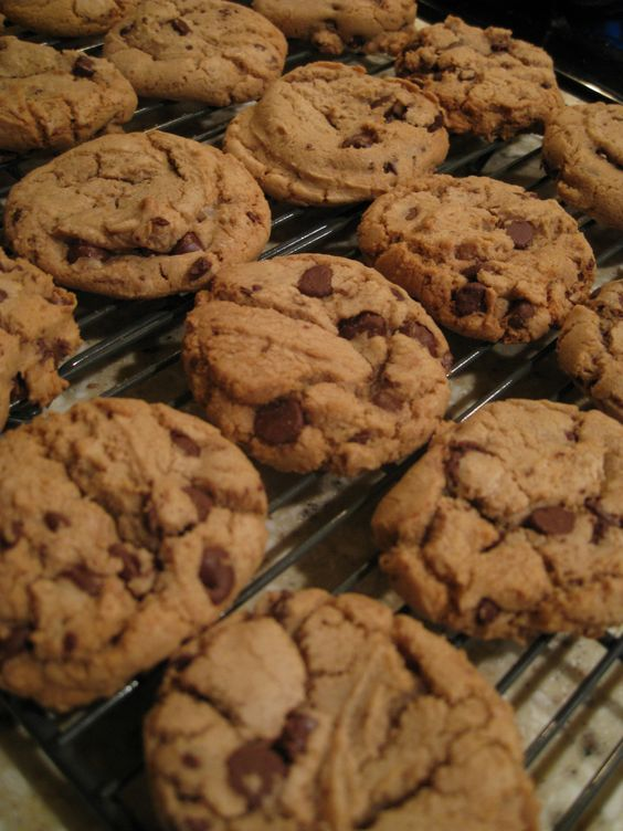 America S Test Kitchen Thick And Chewy Chocolate Chip Cookies Recipe