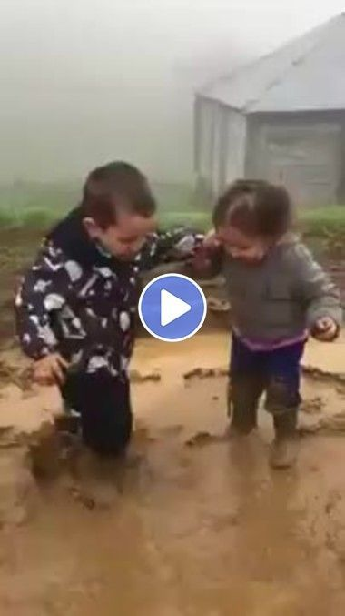 Eles só quer brincar na lama que lindos