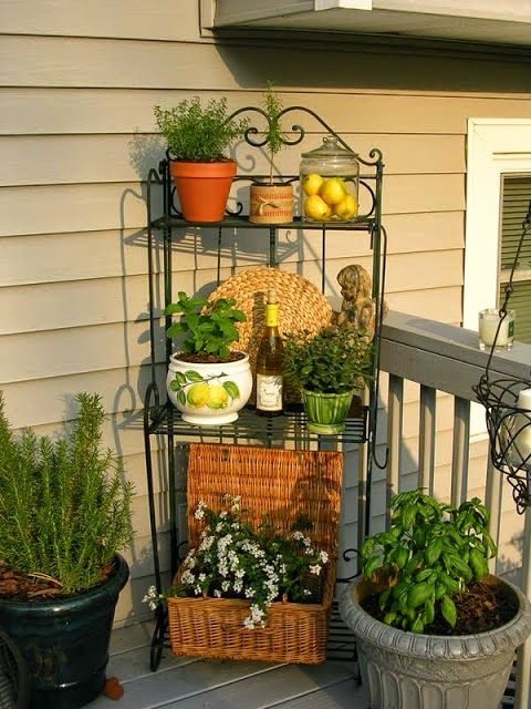 That's a great idea for the end porch wall - a baker's rack with potted flowers/plants and other pretties. (Upstairs Downstairs: Outdoor Baker's Rack ~ Three Ways):