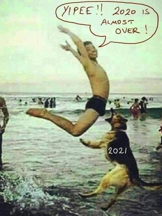 2021 Is Coming Funny Laugh Funny Pictures Crazy Funny Memes