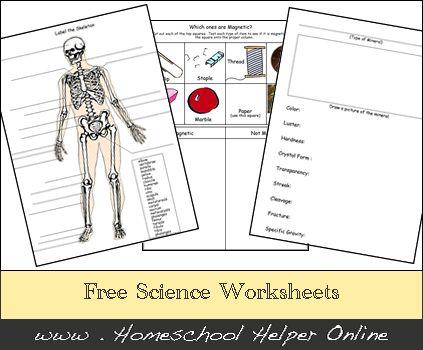 free homeschool science worksheets. Black Bedroom Furniture Sets. Home Design Ideas
