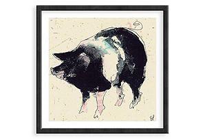 Bella Pieroni, Pig Framed Print