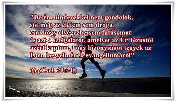 ApCsel_20_24