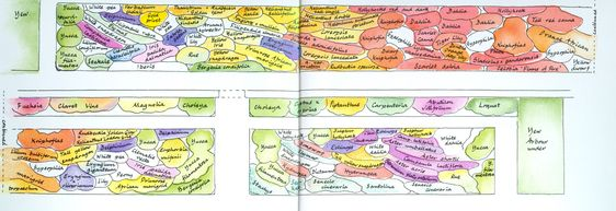 Pinterest the world s catalog of ideas for Gertrude jekyll garden designs