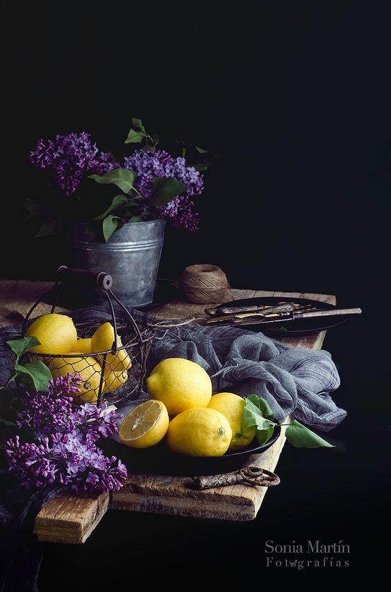https://flic.kr/p/FweUZT | Limones y lilas | Cuando uno no tiene nada más que fotografiar...