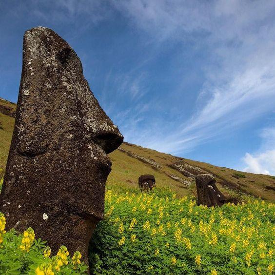 Moai on Rapa Nui aka Easter Island. by everythingeverywhere