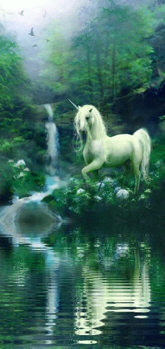 Unicorns are very beautiful creatures although they prefer female humans to males. They are protected and if you kill a unicorn and drink it's silver blood you will be cursed.