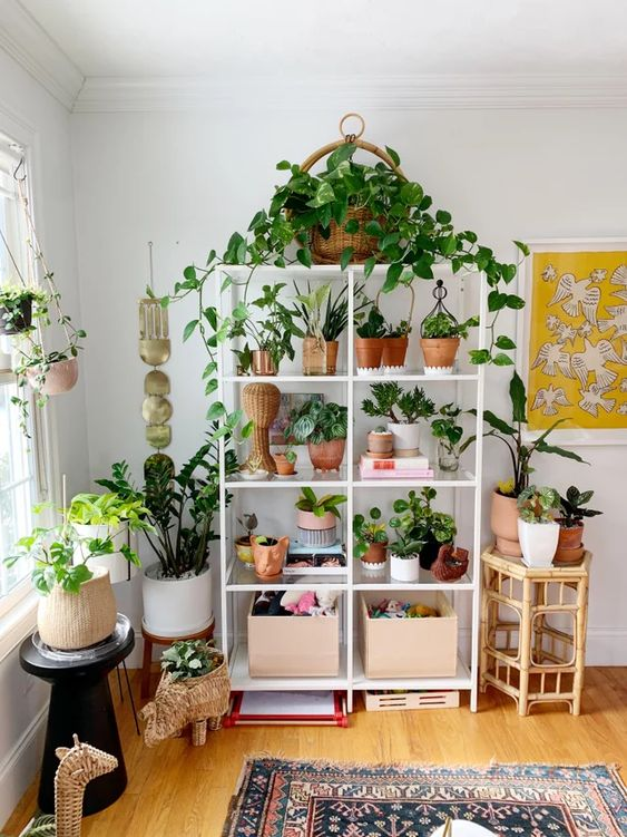 The Front Lines Of My Houseplant Army Fighting Reddit Diy Plant Stand Diy Plants Plant Stand #plant #stand #for #living #room