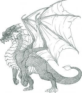 how to draw a dragon step by step -includes tips on scales :)