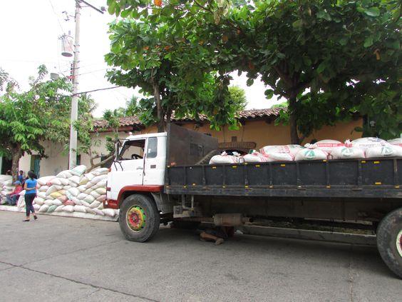Alegría campesina con la reactivacion agricola con Empresa Alba Alimentos, Suchitoto Foto: Paty Silva