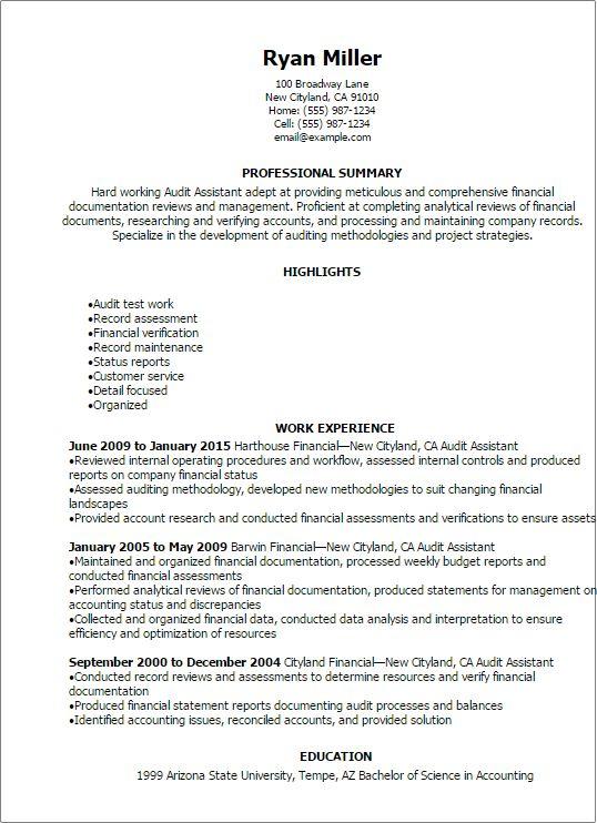 Resume Templates Audit Assistant Resume excel Pinterest - perfect resume az